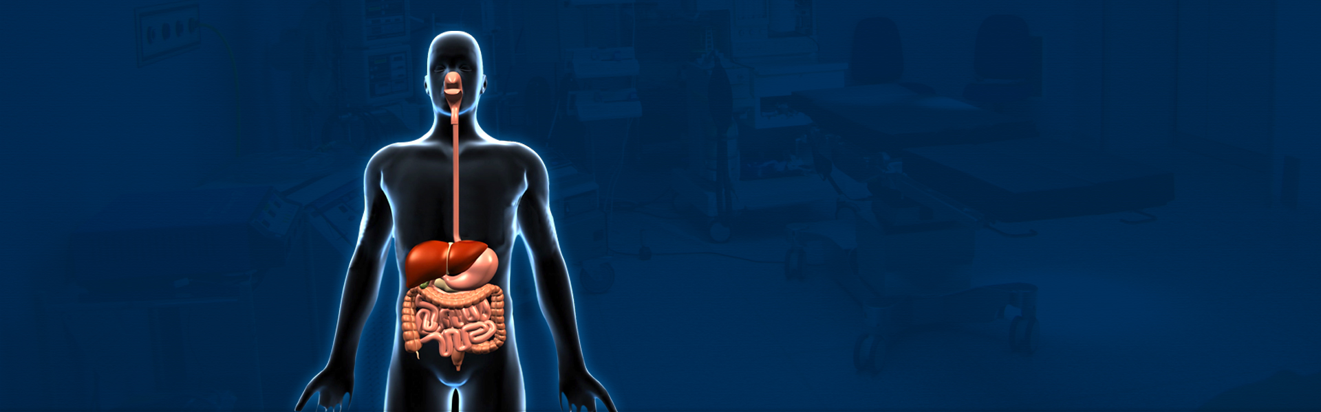 Banner on Gastrointestinal System Disorders